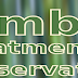 Bamboo Treatment and Preservation