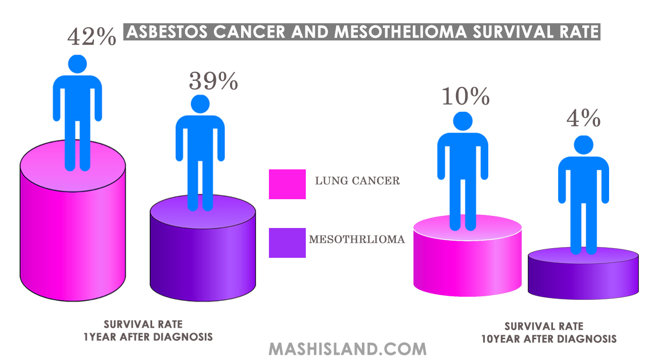 asbestos cancer and mesothelioma survival rate u0026 statistics a hubasbestos cancer and mesothelioma survival rate u0026 statistics