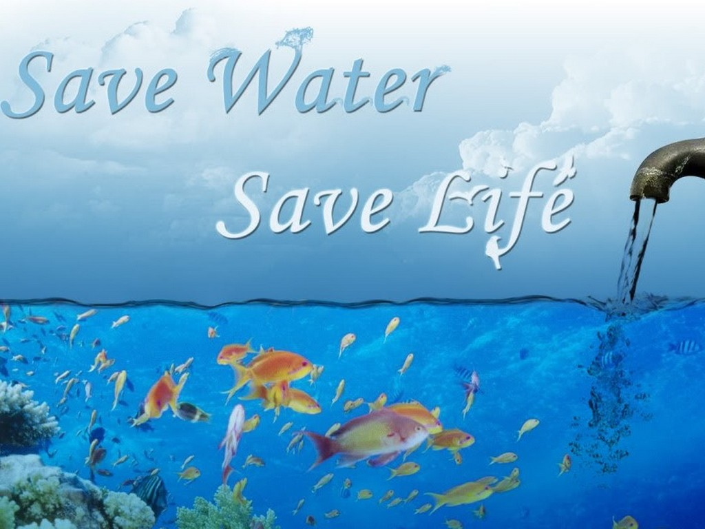Save Water Life Beautiful Wallpaper