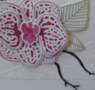 #lovemyjob, Craftyduckydoodah!, Climbing Orchid, May 2018 Coffee & Cards Project, #stampinupik, Stampin' Up! UK Independent  Demonstrator Susan Simpson, Supplies available 24/7 from my online store,