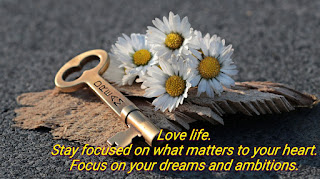 Love life. Stay focused on what matters to your heart. Focus on your dreams and ambitions.