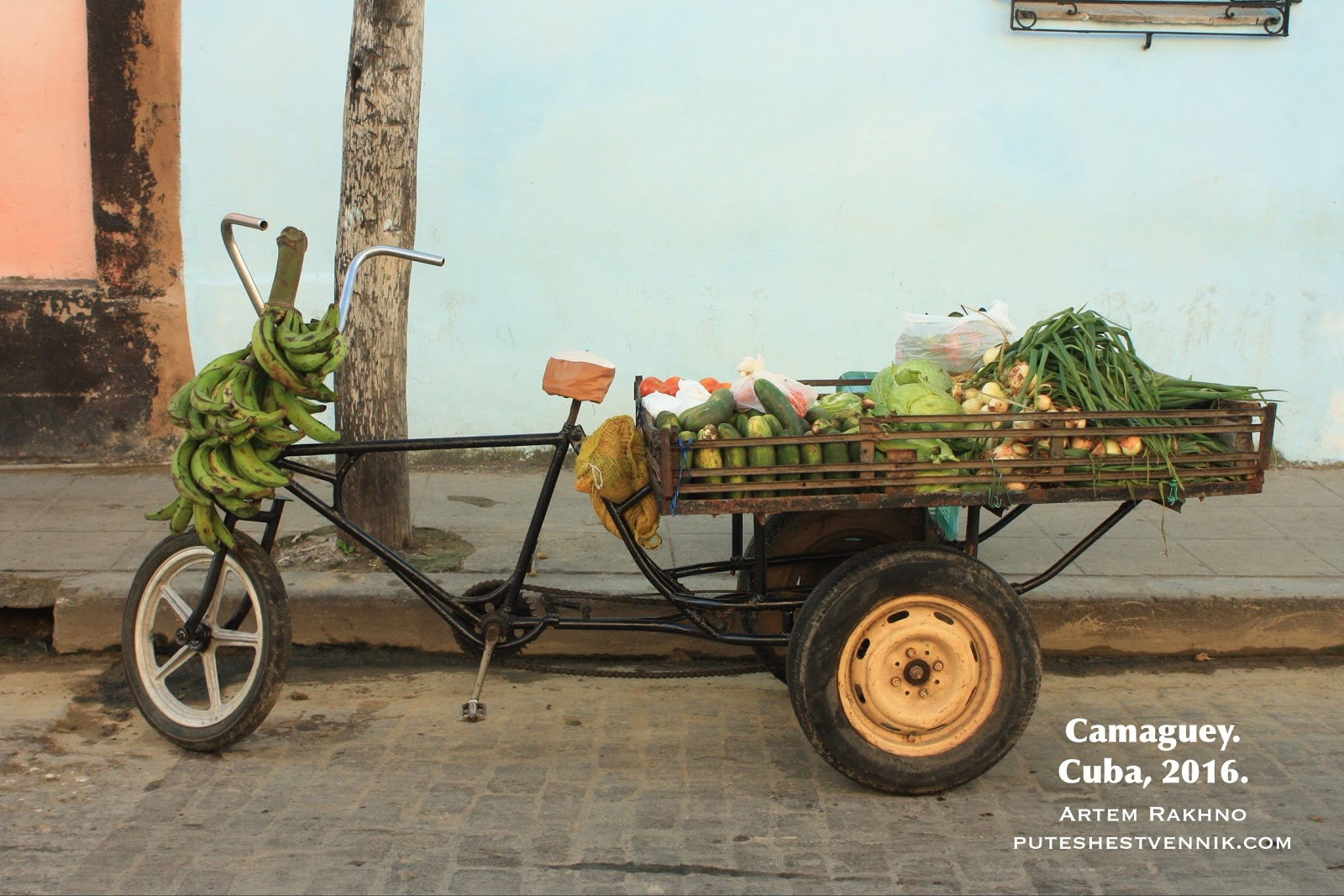Трехколесный велосипед с овощами и бананами