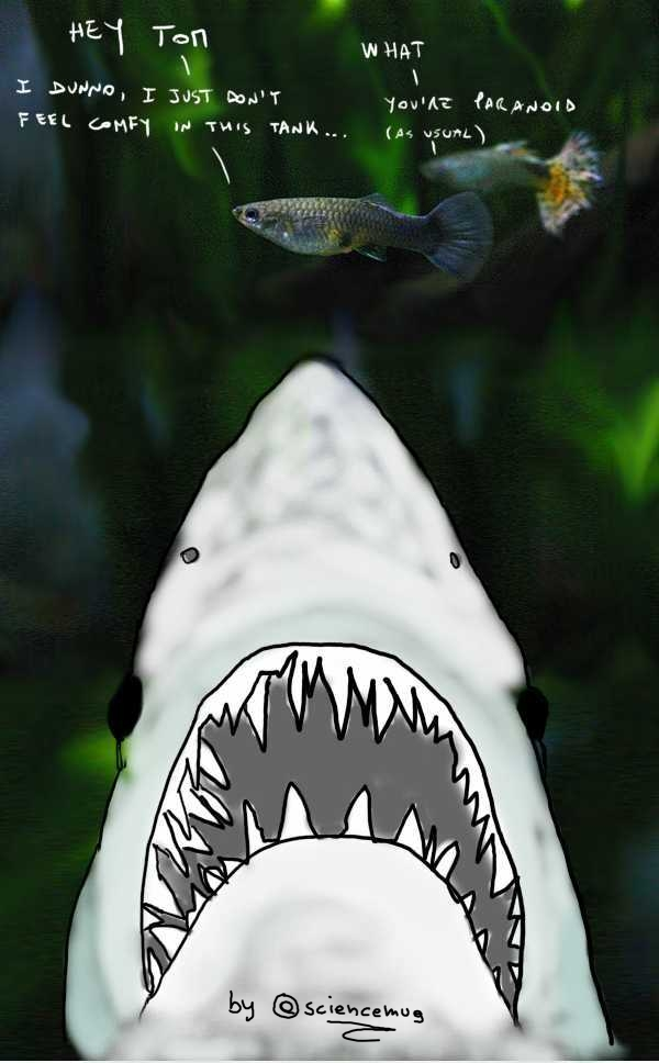 guppies meet jaws_ by sciencemug