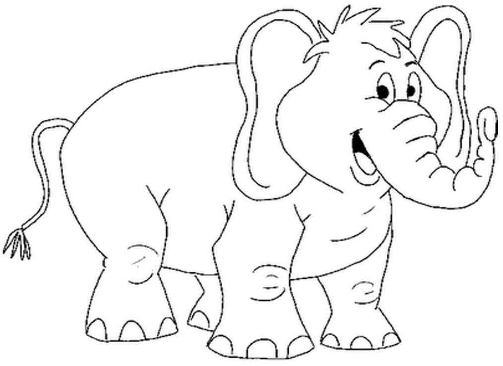 Mewarnai Binatang Untuk Anak Tk Mewarnai Gambar