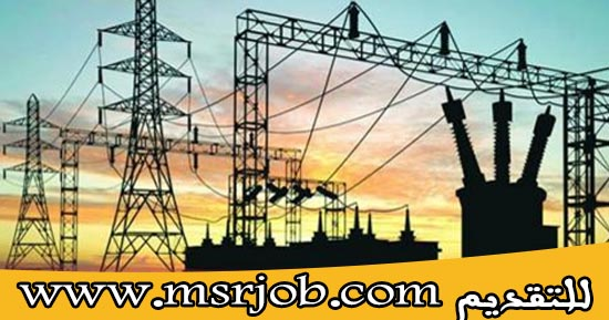وظائف وزارة الكهرباء والطاقة المتجددة - اعلان رقم 5 لسنة 2016