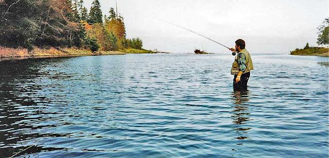 Oyster Mündung auf Vancouver Island