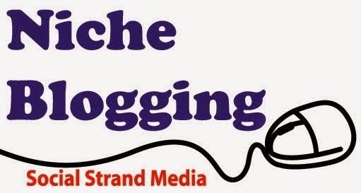 Niche Blog yang Ramai Pengunjung