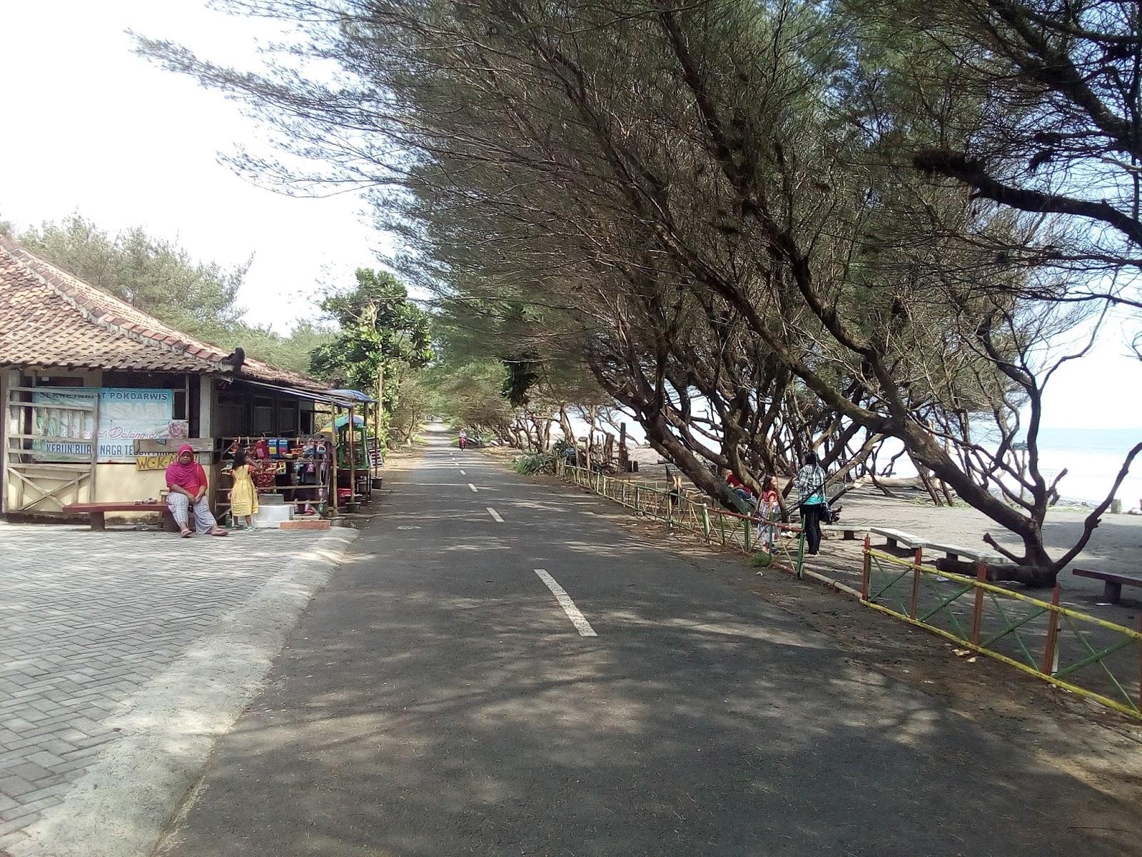 Wisata Pantai Bantul Pantai Pandansari Paket Wisata Pantai