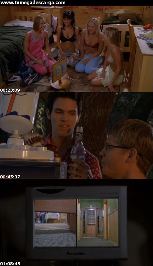 American Pie 4: (2005)