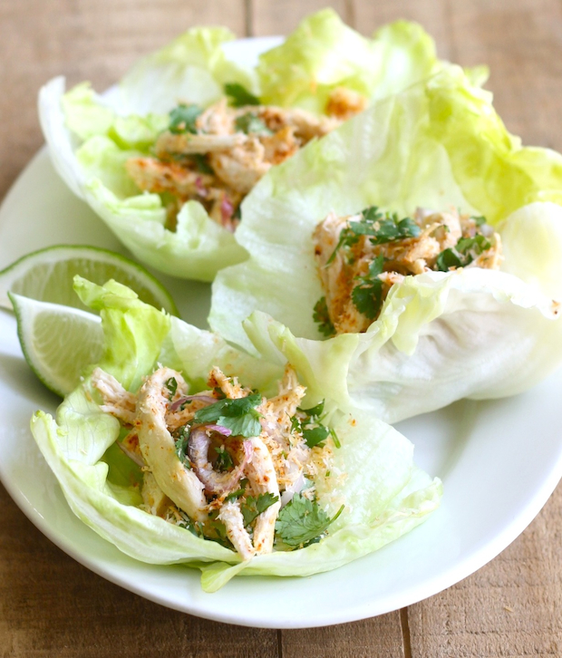Toasted Coconut & Chicken Lettuce Wraps recipe by SeasonWithSpice.com