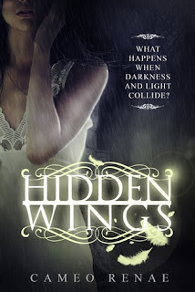 hidden wings by cameo renae yound adult paranormal romance