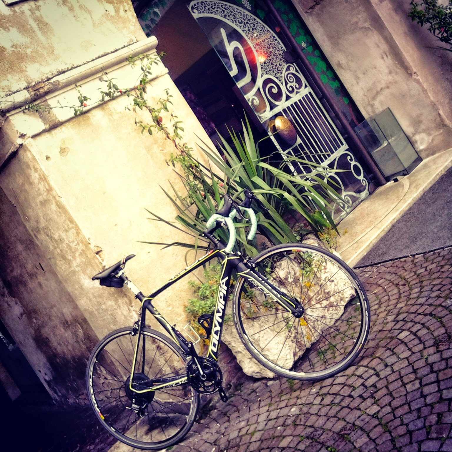 road bike rental in treviso