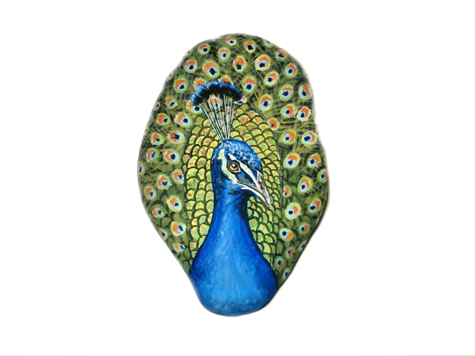 Peacock Painted On A Rock Stone Painting Stone Art