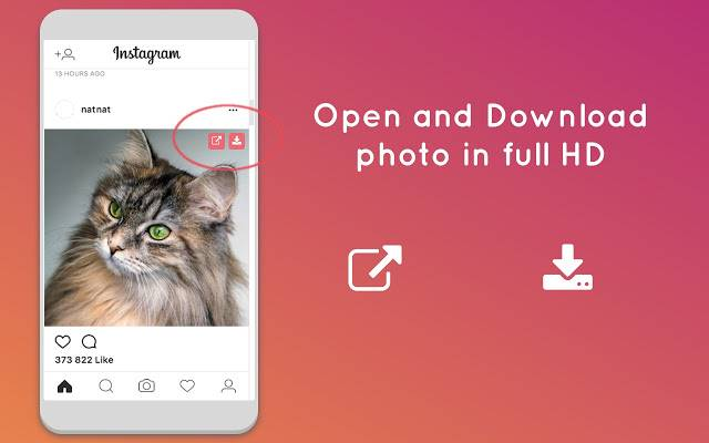 download instagram photo video