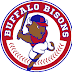Bisons take down Indians, 3-1