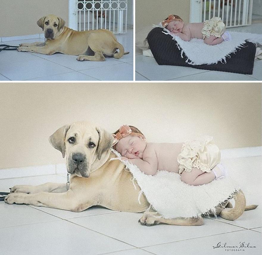maternidade-fotografia-linda-amor-blog-materno-família-fotos-lindas-gravida-filhos-bebê-recém-nascido