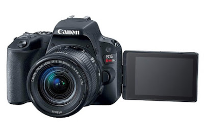 Canon SL2 Camera Reviews