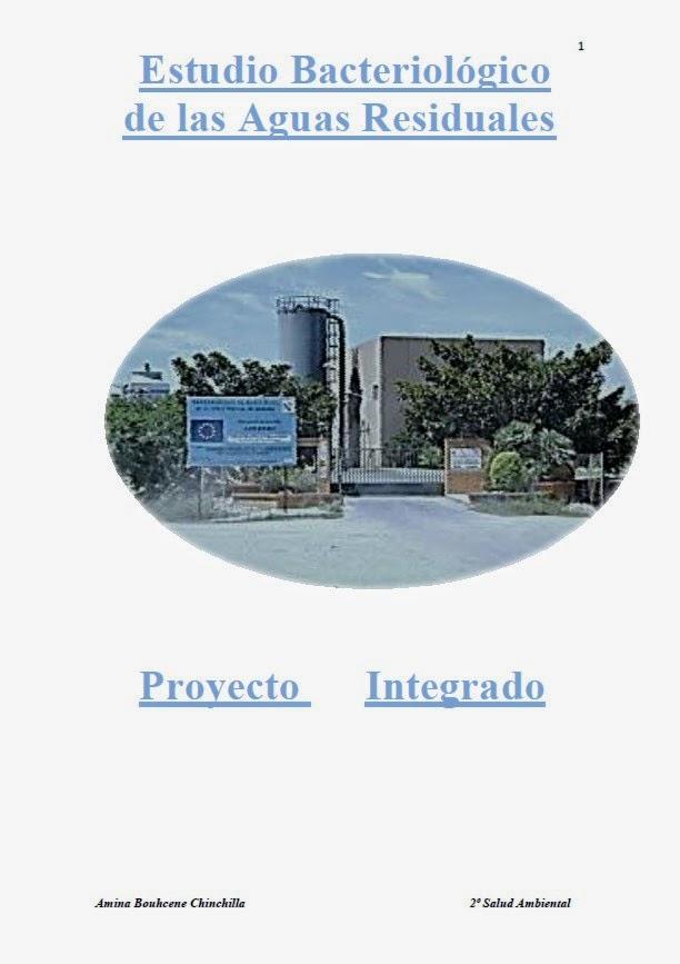 https://sites.google.com/site/fernandomarati/pdf/Amina.pdf