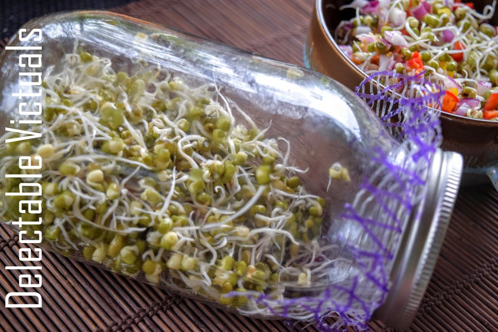 Sprouted Whole Green Mung Bean Salad Sprouted fenugreek