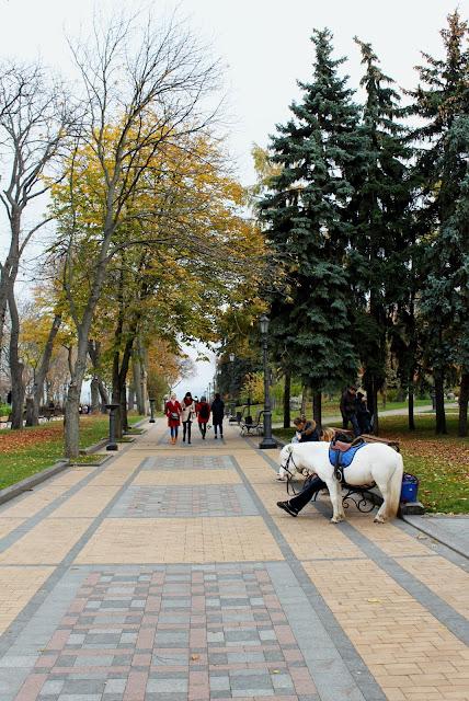 Осенняя аллея Владимирской горки