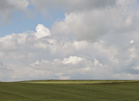 Pola nad Jarnołtowem.