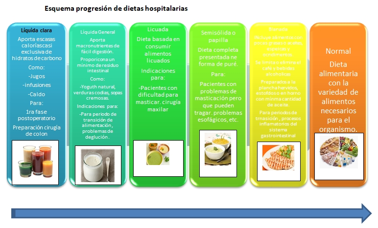 tipos de dietas hospitalarias dietoterapia
