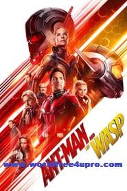 Ant-Man and the Wasp 2018 Full Hindi Movie Download Dual Audio BluRay Rip 720p [Hindi 5.1 + English 2.0] on worldfree4upro