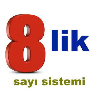 oktal sayı sistemi