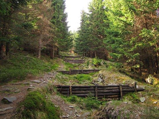 Drewniane progi zabezpieczające ciąg leśny ze szlakiem.