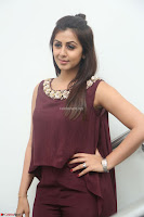 Nikki Galrani in a Brown Shining Sleeveless Gown at Nakshatram music launch ~  Exclusive 002.JPG