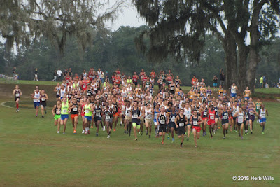 2015 FHSAA-4A Boys Cross Country Race