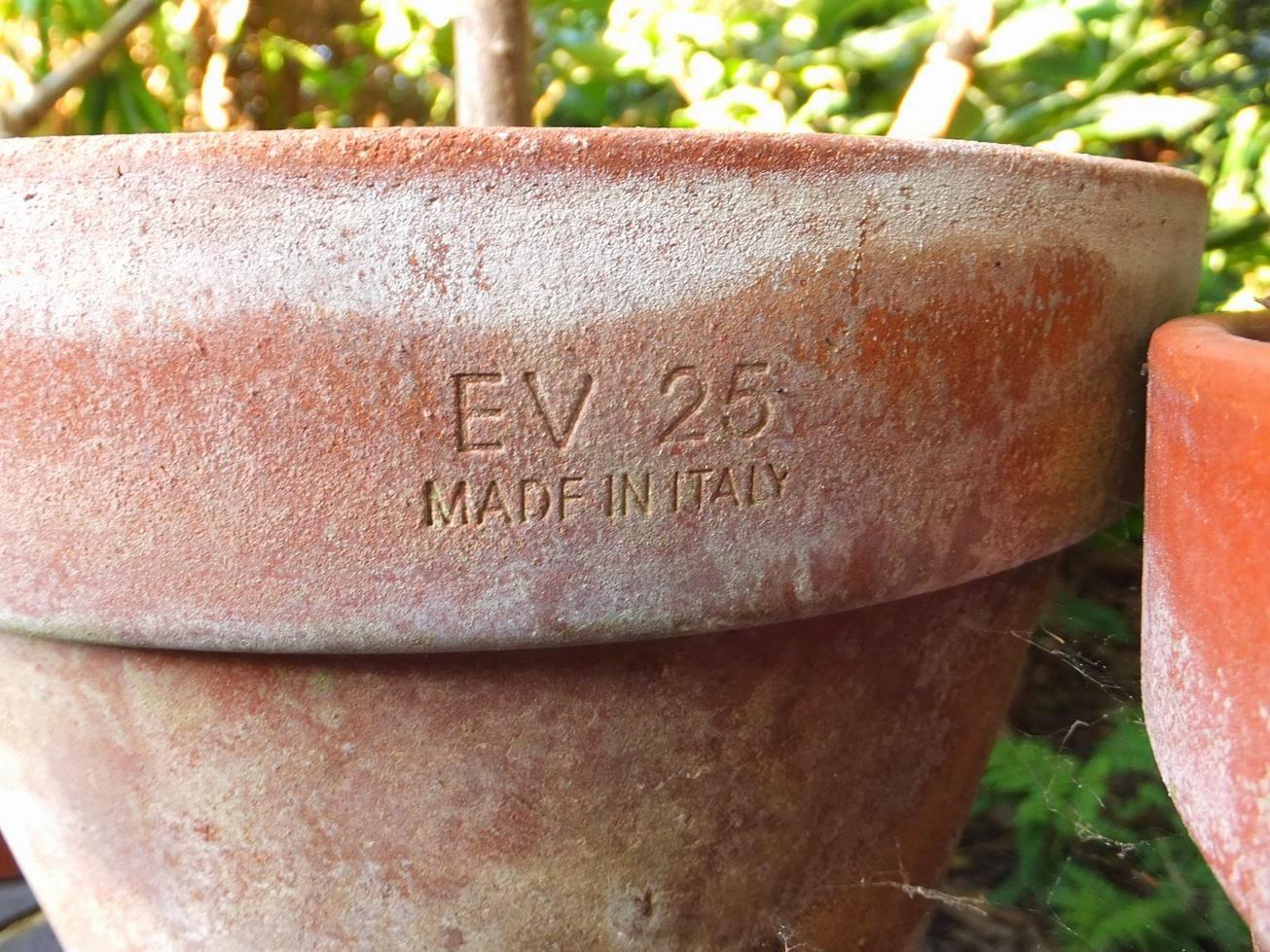 Alternative Eden: With Reluctance I go Terracotta