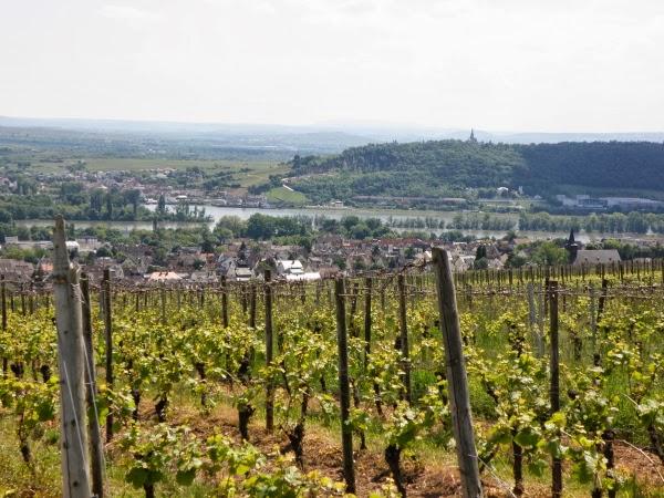 Blick von der Benediktinerinnenabtei St. Hildegard im Rheingau