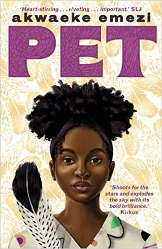 Pet by Akwaeke Emezi | Superior Young Adult Fiction