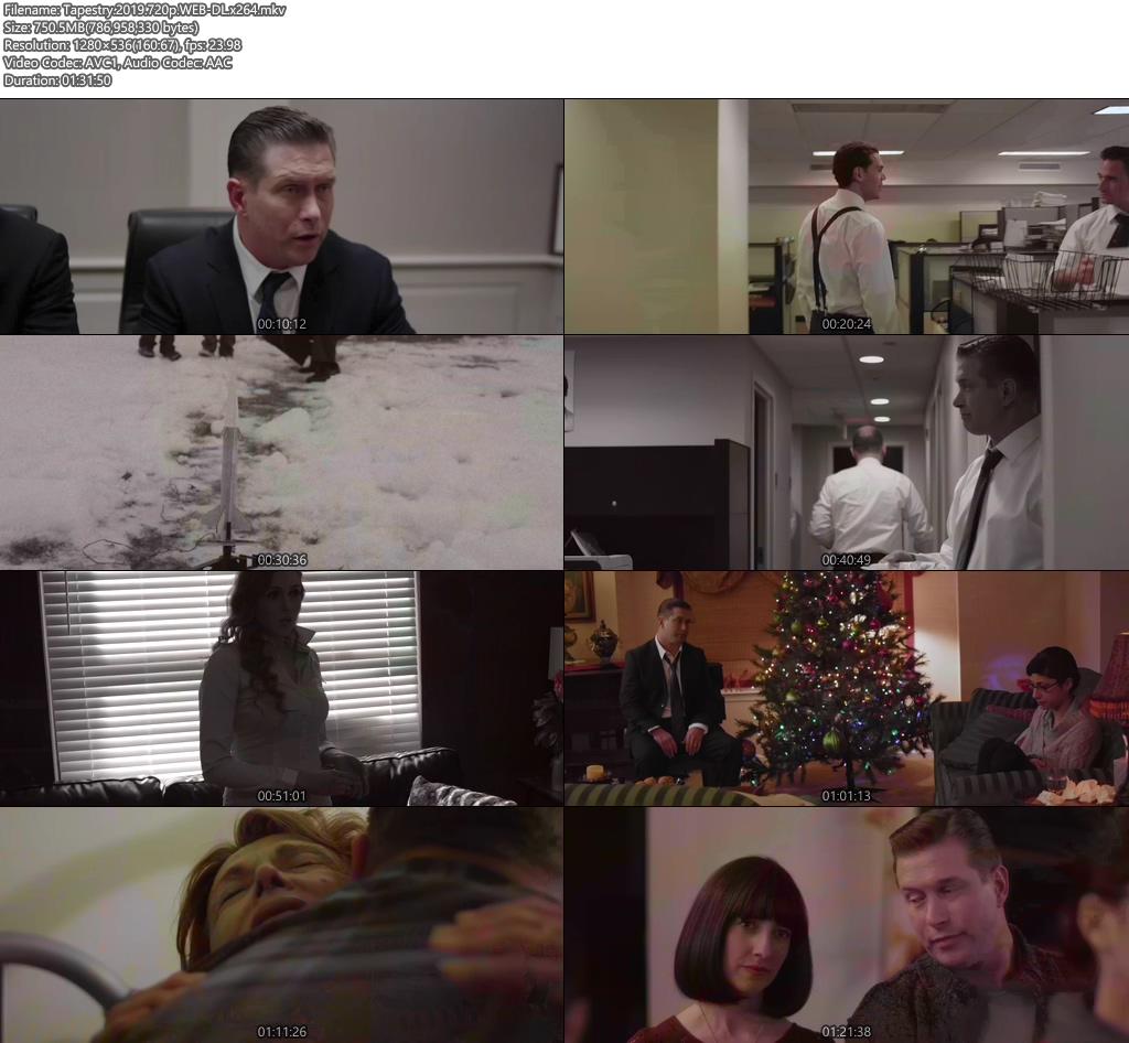 Tapestry 2019 720p WEB-DL x264   480p 300MB   100MB HEVC Screenshot