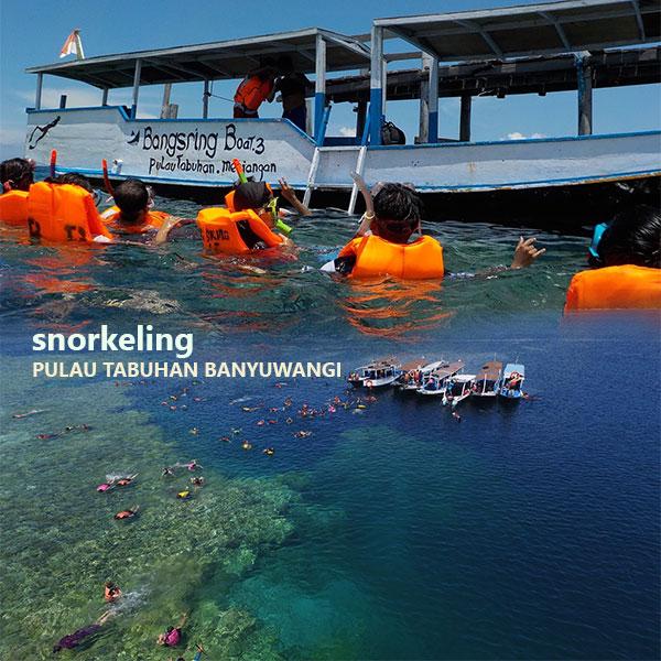 Snorkeling Pulau Tabuhan Banyuwangi