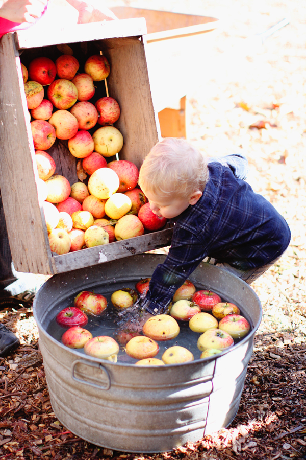 Washing apples before juicing