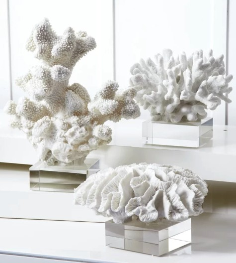 Coral Sculptures on Stands