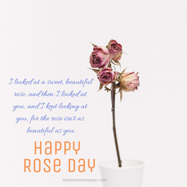 Rose Day Quotes wife