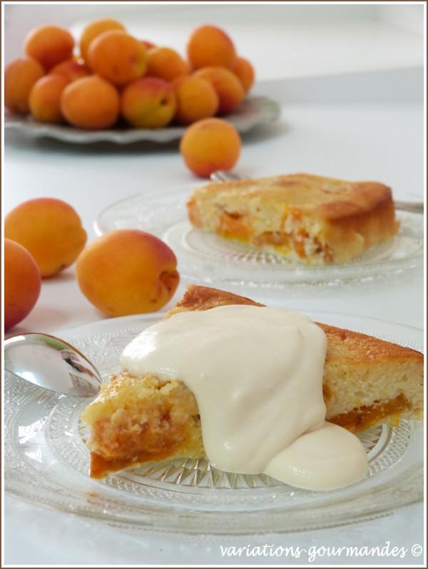 variations gourmandes: gâteau d'abricots (sans gluten), sauce