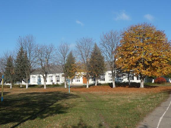 Тяпче. Корпус школы и спортивная площадка