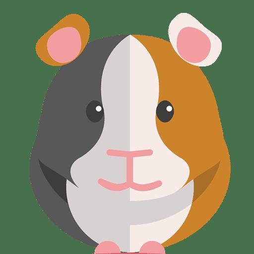 Plaatje met het vooraanzicht van een cavia in de kleuren grijs bruin