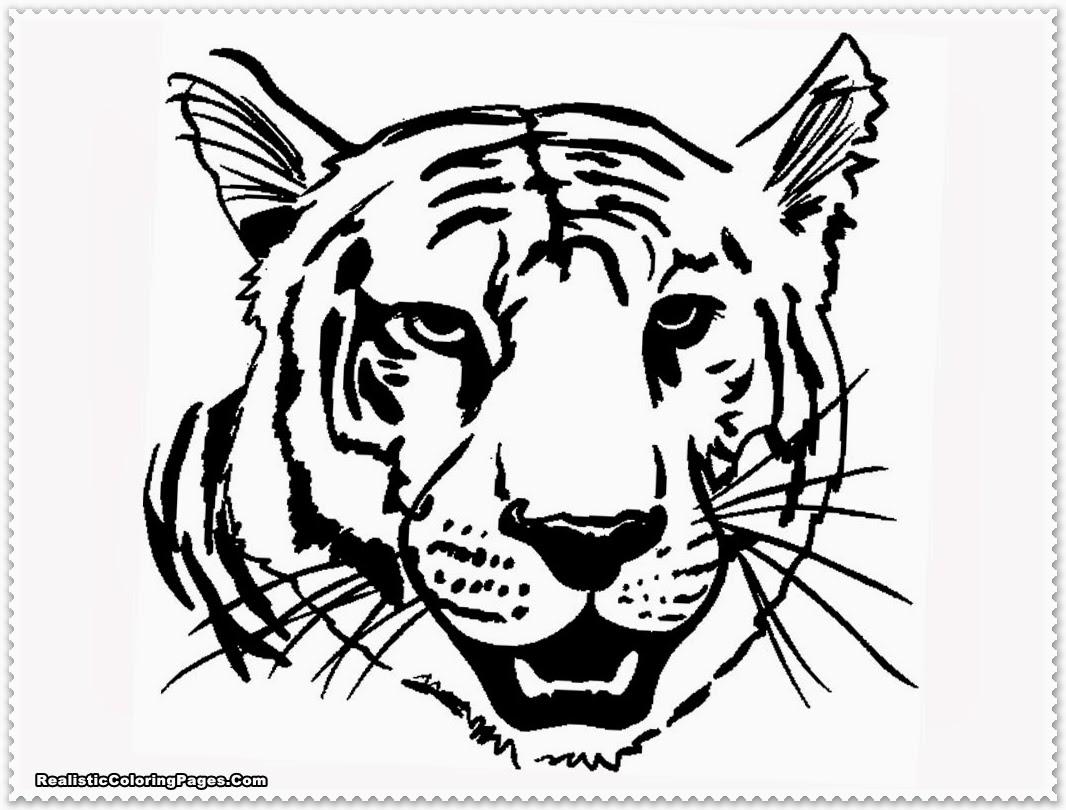 Coloring Pages Of A Tiger - Democraciaejustica