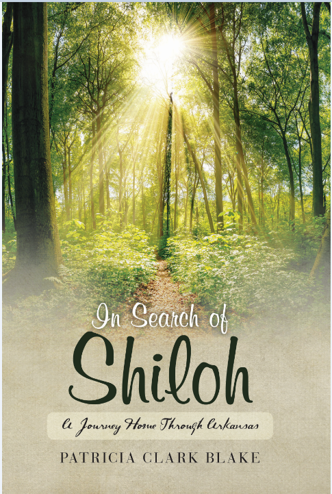 christian singles in shiloh Bishop david oyedepo declares shiloh 2017 a new dawn posted on october 26, 2017 by  christian leaders christian single critical questions kingdom news lifestyle.