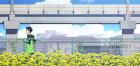 Reset Lyrics (Kaze ga Tsuyoku Fuiteiru Ending) - Taichi Mukai