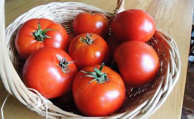 buah tomat merah untuk di jus