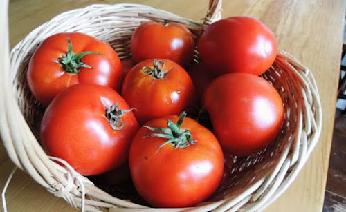 Tomat merah untuk di jus tomat