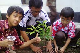 Ayo Menanam Pohon di Sekolah!