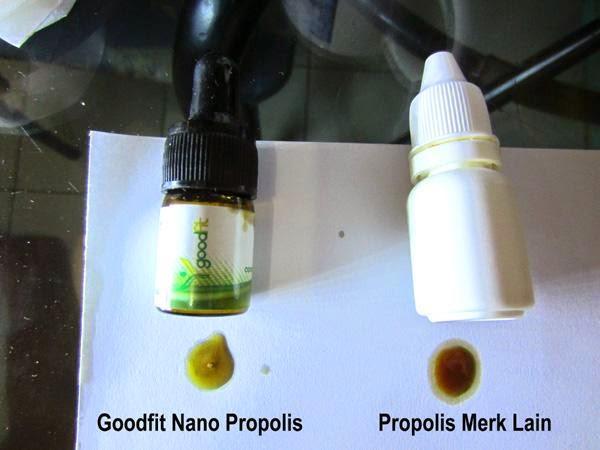 Propolis Goodfit vs Propolis biasa
