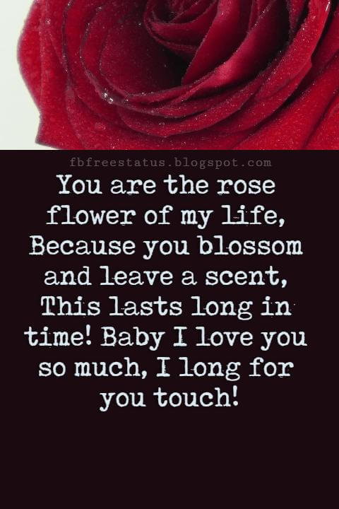 Love Text Messages, You are the rose flower of my life, Because you blossom and leave a scent, This lasts long in time! Baby I love you so much, I long for you touch!